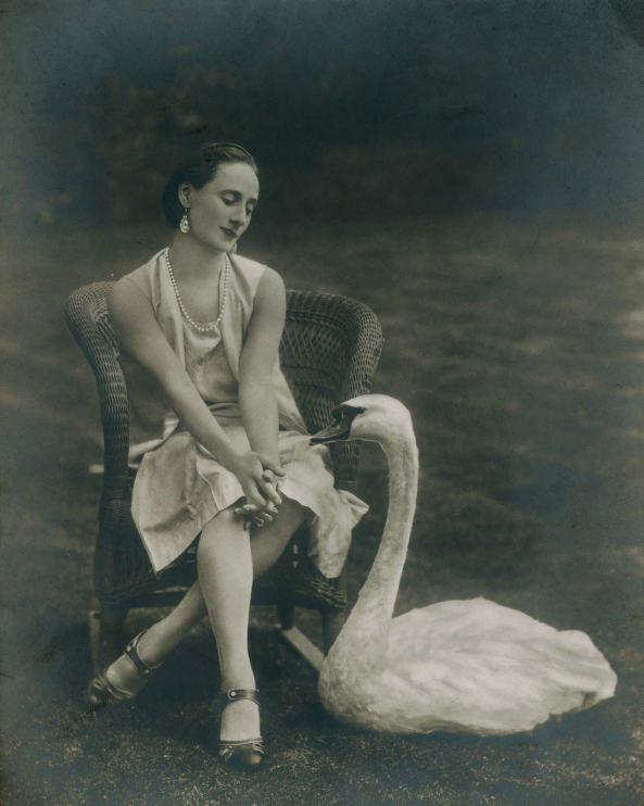 Fotografia este o donație pentru Biblioteca The Newberry Library, din partea lui Ann Barzel și o înfățisează pe Anna Pavlova împreună cu o lebădă